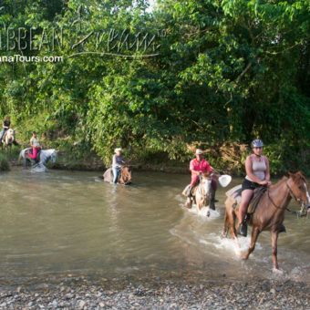 River Horseback Riding