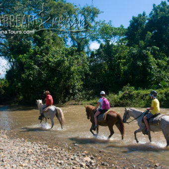 Horseback Riding on the River